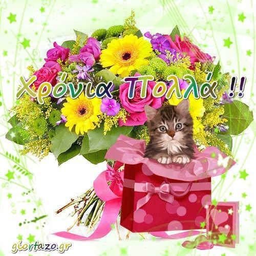λουλουδια δωρο γατουλα