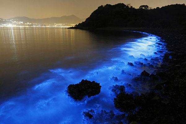 Η θάλασσα φωσφορίζει και δημιουργεί υπερθέαμα!
