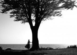 Εσύ τι δέντρο είσαι και τι αποκαλύπτει για την προσωπικότητά σου;