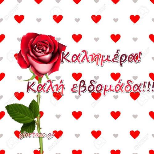 κόκκινο λουλούδια