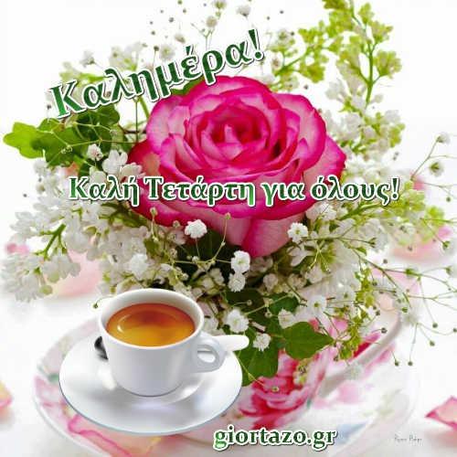 λουλουδια καφες