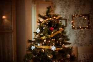 Read more about the article Το χριστουγεννιάτικο δέντρο που ταιριάζει σε κάθε ζώδιο!