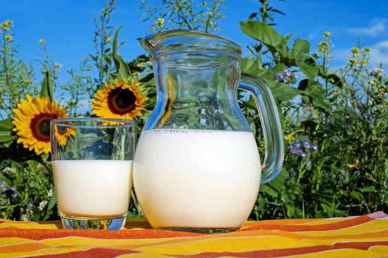 Γάλα:Βοηθάει στην αύξηση του μυικού ιστού