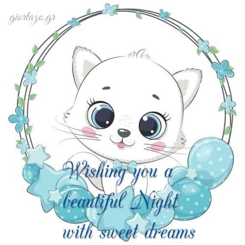 Wishing you a  beautiful Night