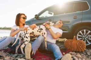 Read more about the article Τα ζώδια και πώς υπονομεύουν μόνα τους την ευτυχία τους!