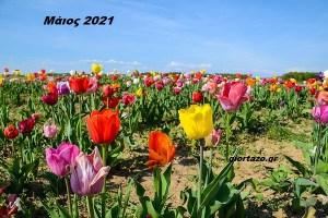 Μηνιαίες αστρολογικές προβλέψεις για τον Μάιο του 2021
