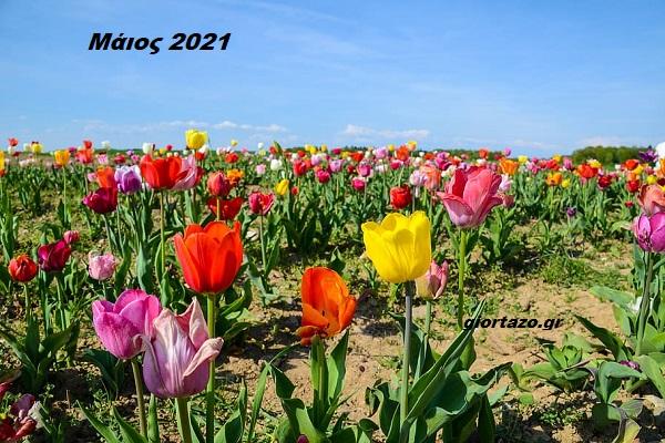 Read more about the article Μηνιαίες αστρολογικές προβλέψεις για τον Μάιο του 2021