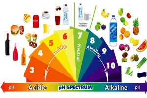 Read more about the article Αλκαλική Δίαιτα λειτουργεί;