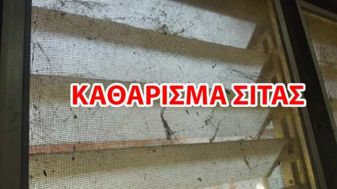 Read more about the article Ο Ευκολότερος Τρόπος να Καθαρίσετε Σίτες Παραθύρων