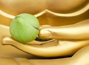 Read more about the article Πώς το Φενγκ Σούι θα σε βοηθήσει να πετύχεις όσα θέλεις στη ζωή