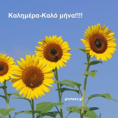 Εικόνες του καλοκαιριού για καλό μήνα!!! -giortazo.gr