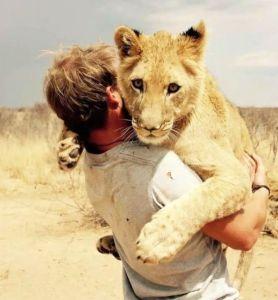 Read more about the article Λιοντάρι Αγκαλιάζει τους σωτήρες της. Viral βίντεο