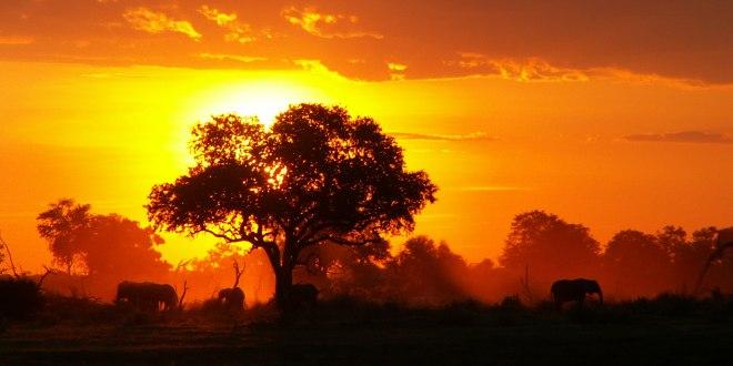 IL 2013 NEL MONDO – PROFONDO NERO IN AFRICA