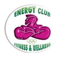Logo Palestra Energy