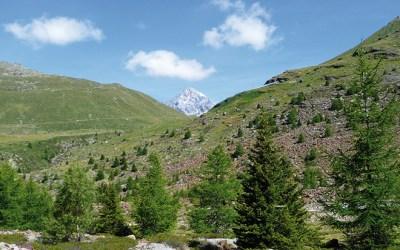 Rifugio Pizzini – Valfurva (SO)