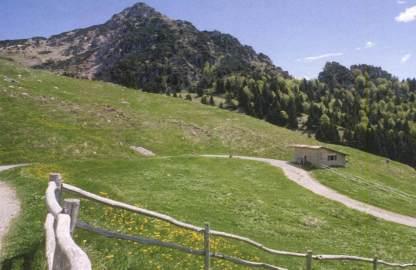 Campi estivi ambientali in baita Monte Pra'