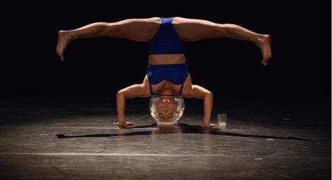 Mirabilia International Circus & Performing Arts Festival 2019