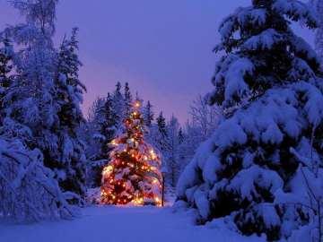 In Cascina Santa Brera dicembre è avventura nella natura