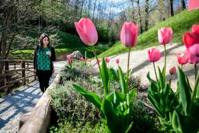 I segreti delle erbe: a caccia di profumi con tutta la famiglia