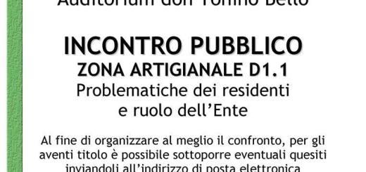 Incontro_pubblico_D1.1.jpg