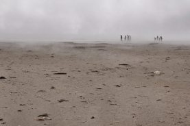 Nebelmenschen