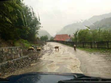 Straße von Lepushe nach Tamara, Albanien