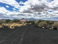 Die Vulkanlandschaft im Tsavo West