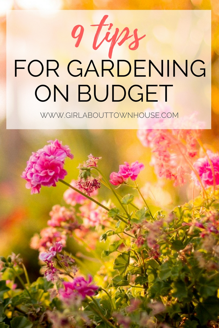 How to garden on a budget! Even small gardens can cost you a fortune if your not careful. Here are 9 ideas to save you money in your backyard - from DIY pallete project to a budget friendly patio..