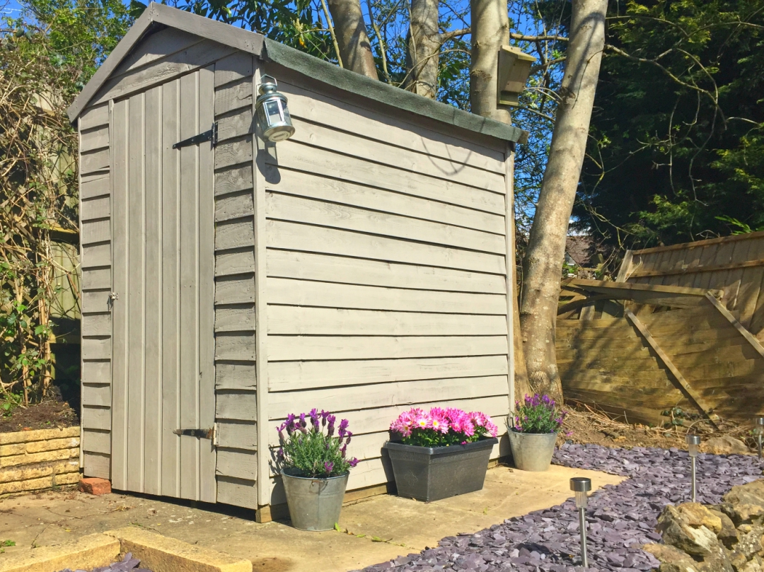 Gardening tips: Simple ways to add colour