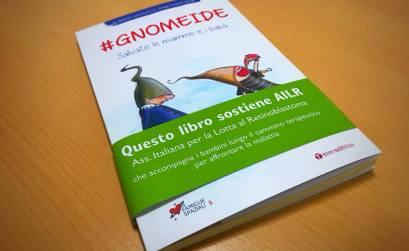 Gnomeide