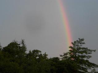 rainbow-new-zealand
