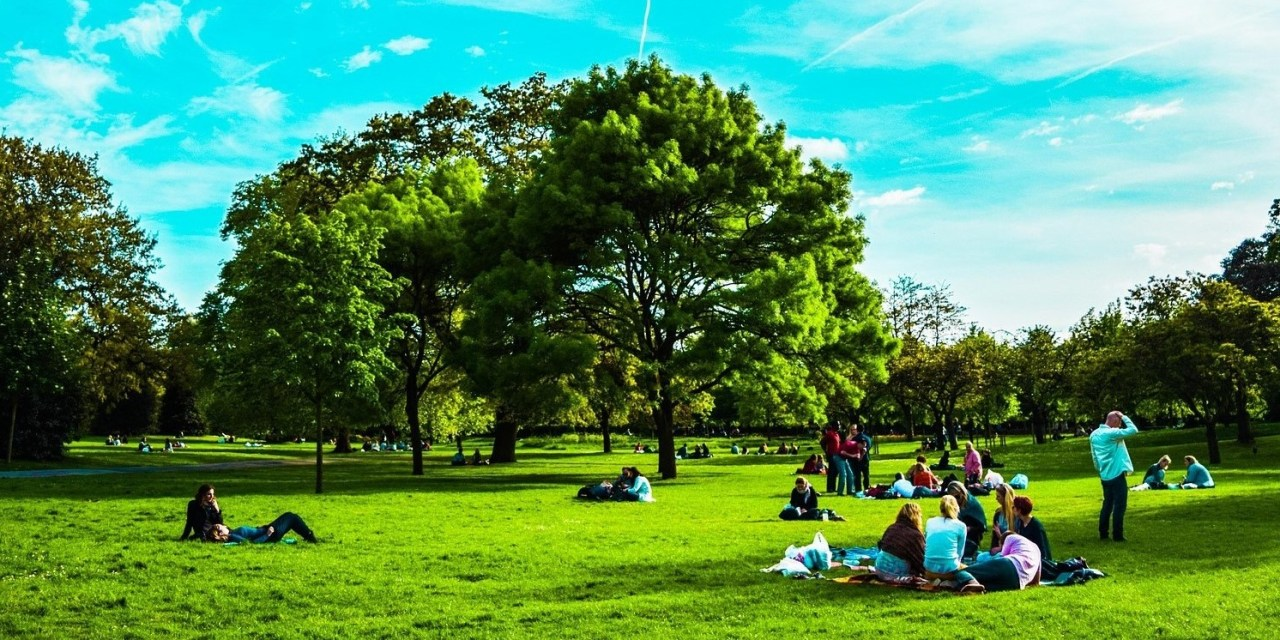 Picnicking in Hyde Park, London