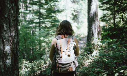 Backpacking Essentials For Newbies