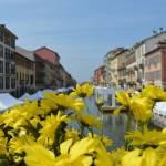Milan in spring 1