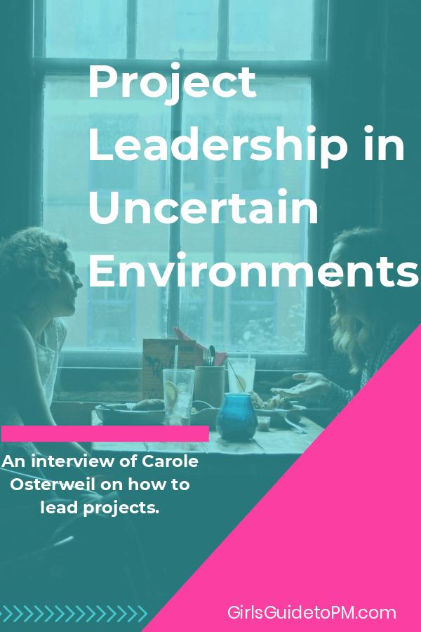 Entrevista con Carole Osterweil sobre cómo dirigir proyectos