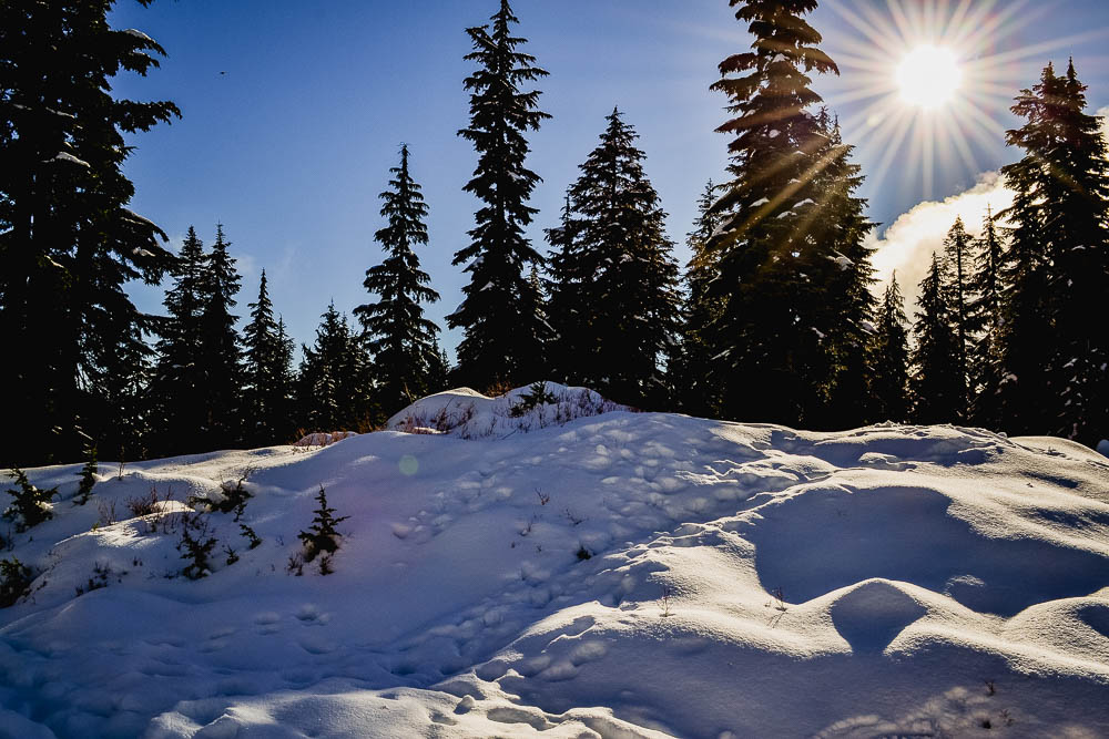 first snow fall atop cypress mountain in vancouver