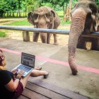 Diana Edelman at Elephant Nature Park