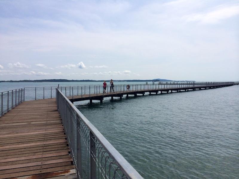 On the boardwalk at Chek Jawa, Pulau Ubin