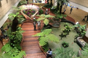 How To Spend A Stopover At Singapore Changi Airport