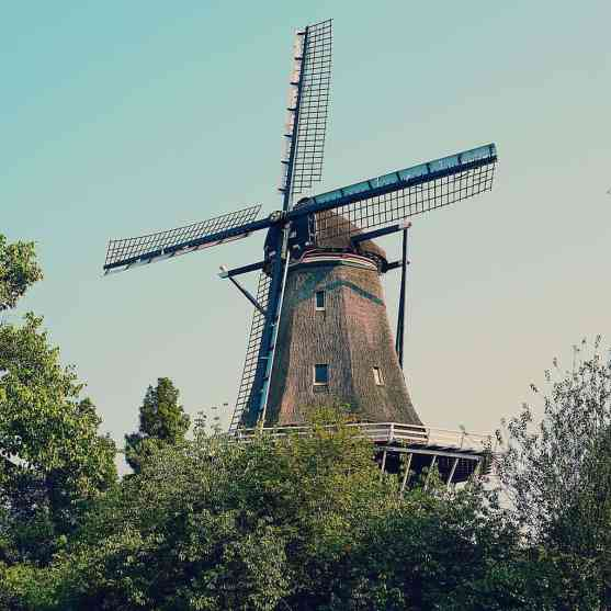 I never met a Dutch Windmill that I didn't like.