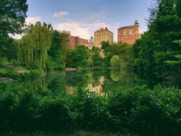 AKA Central Park is an exquisite hotel that gives you amazing views of Central Park.