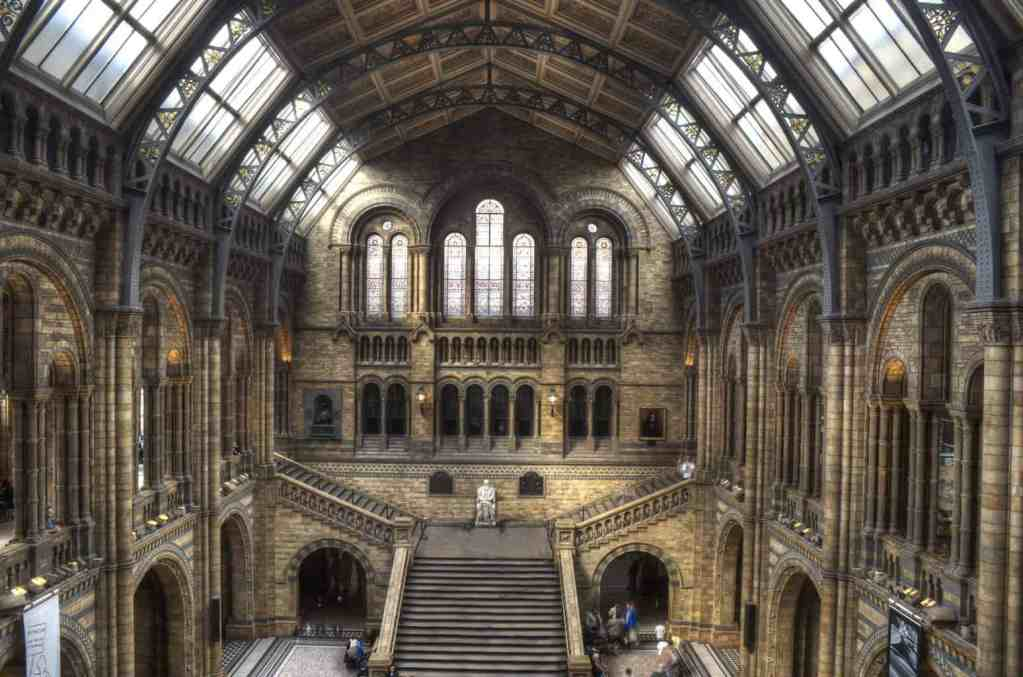 The beautiful, Central Hall of the Natural History Museum is decorated with paintings that are beautifully illuminated by the sun.