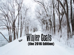 Winter Goals