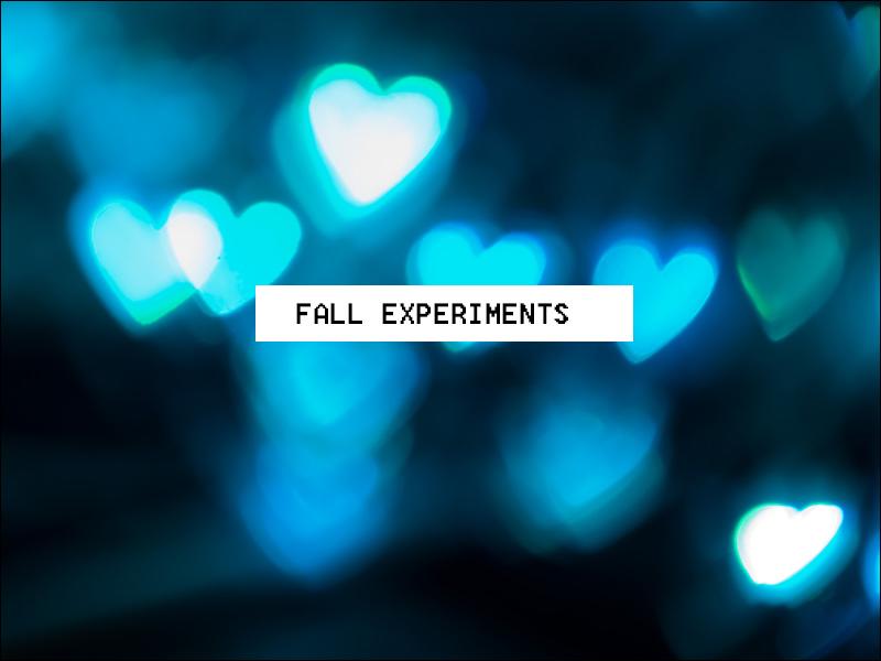 Fall Life Experiments