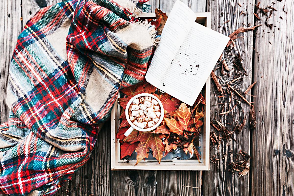 Cozy Fall Reading