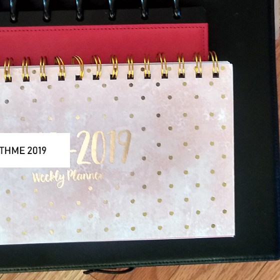 Plan With Me 2019