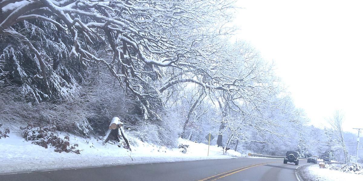 winter2019