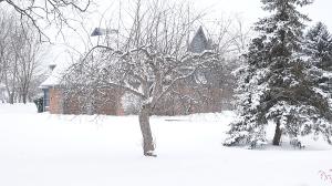 winter 2020 winter