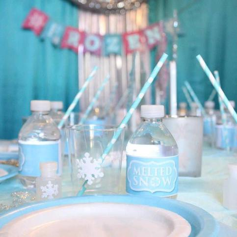 Jacksonville Frozen Birthday Party Event Planning