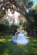 Cinderella Magical Princess Party